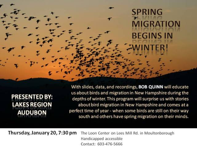 Lakes Region Audubon Monthly Program