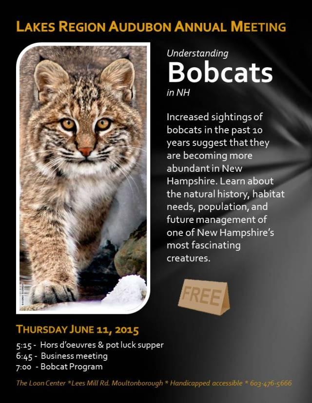 Bobcat_flyer_050515