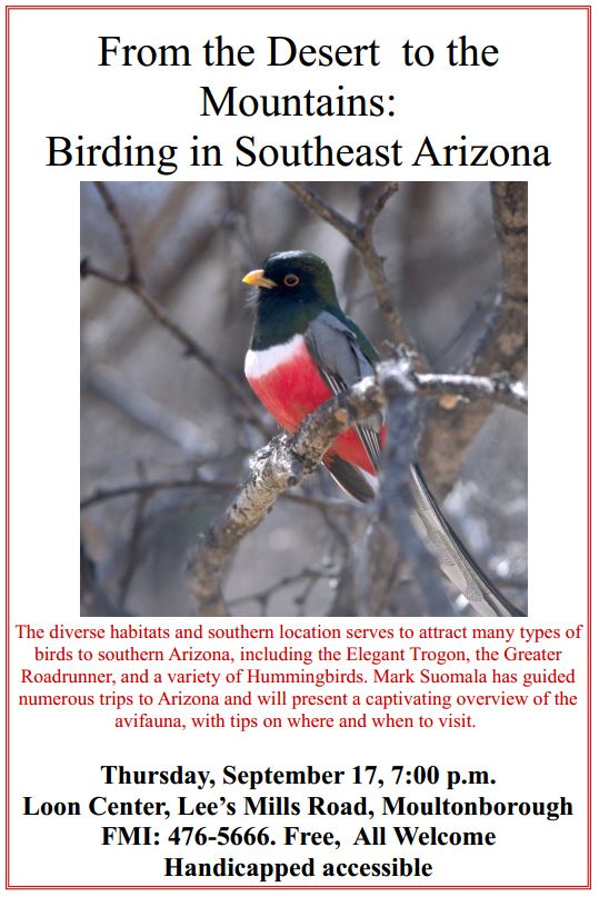 Birding Arizona Sept 2015