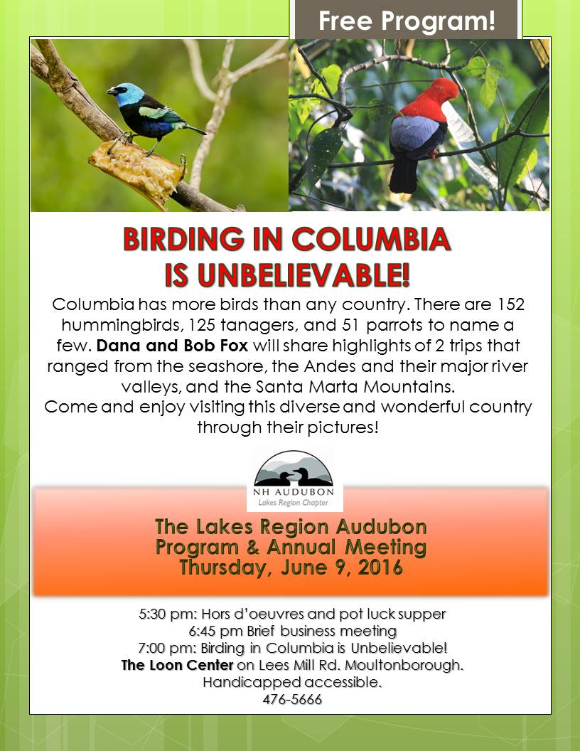 Christmas Birdcount Results Pittsburgh 2020 Nh Audubon Christmas Bird Count 2020 2020   Rffzgd